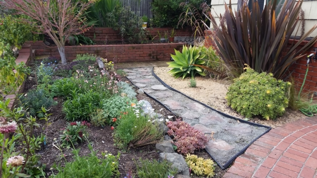 Garden Cleanup